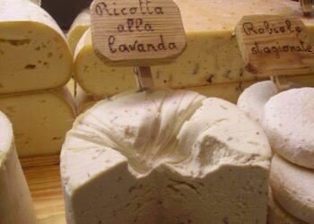 Azienda Isola produzione formaggi Palanfrè